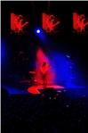NEGRAMARO - UNA STORIA SEMPLICE TOUR 2013 - foto 56