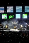 NEGRAMARO - UNA STORIA SEMPLICE TOUR 2013 - foto 58
