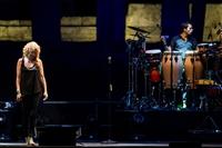 FIORELLA MANNOIA - FIORELLA LIVE 2015 - foto 27