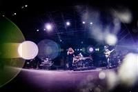 FIORELLA MANNOIA - FIORELLA LIVE 2015 - foto 33