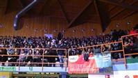 NEGRAMARO - LA RIVOLUZIONE STA ARRIVANDO TOUR 2015 - foto 34