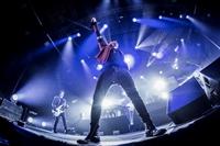 NEGRAMARO - LA RIVOLUZIONE STA ARRIVANDO TOUR 2015 - foto 49
