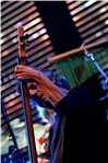 PINO DANIELE - PINO DANIELE LIVE - foto 50