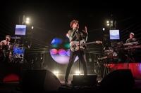 THE KOLORS - LIVE 2017 - foto 35