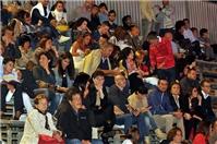 ENRICO BRIGNANO - EVOLUSHOW TOUR 2014 - foto 17