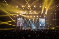 LIGABUE - MADE IN ITALY - PALASPORT 2017 - foto 19