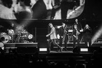 LIGABUE - MADE IN ITALY - PALASPORT 2017 - foto 35