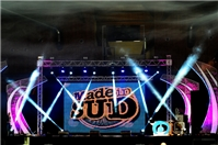 MADE IN SUD LIVE - TOUR 2015 - foto 1