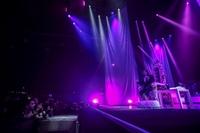 GIANNA NANNINI - FENOMENALE IL TOUR  - foto 56