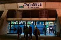 POOH - REUNION - Palasport - foto 2